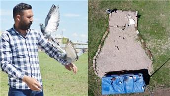 Güvercinlerine yuva yapmak için arazi satın aldı!