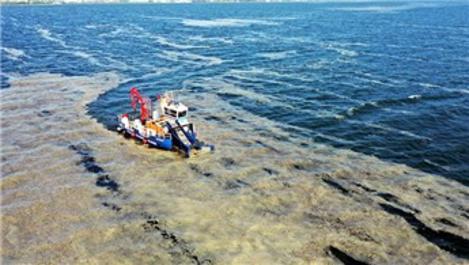 İzmit Körfezi'nde 50 günde 150 ton deniz salyası toplandı