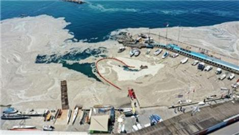 Marmara Denizi'ndeki müsilaj salgına sebep olur mu?