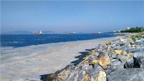 Marmara Denizi'nde 2 bin 684 metreküp müsilaj temizlendi