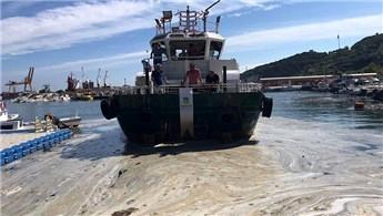 Marmara Adası sahilindeki müsilaj temizleniyor