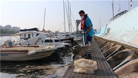 Tuzla'da müsilaj temizleme çalışmaları devam ediyor