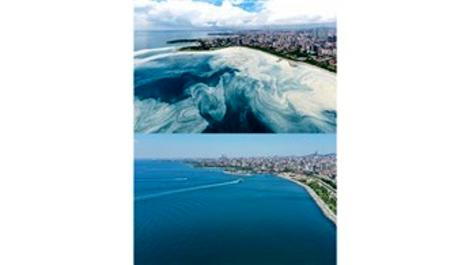 İstanbul kıyılarında müsilaj çok azaldı