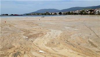 Marmara'nın güneyinde bir ayda 4 bin metreküp müsilaj toplandı