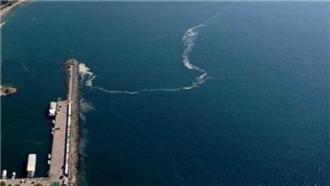 Marmara'da müsilaj azaldığı için temizlik yapılmadı