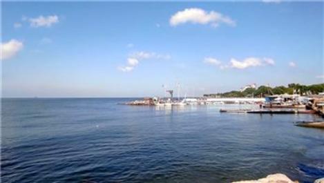 Marmara Denizi'nde balıklar görünmeye başladı