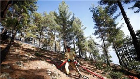 Aladağlar Milli Parkı'ndaki yangın kontrol altına alındı