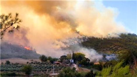 Yangınla ilgili destek ödemeleri başlıyor!