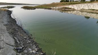 Sazlıdere Barajı'nın yüzeyi yeşile büründü