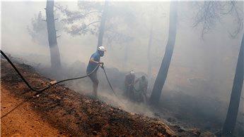 Bodrum'daki yangını söndürmek için herkes seferber oldu