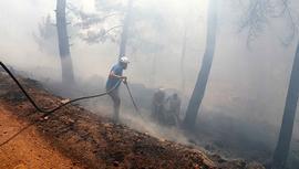 Bodrum'daki orman yangınları için topyekün seferberlik