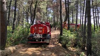 Beykoz'da ormanlık alanda çıkan yangın kontrol altına alındı