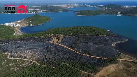 Ayvalık'taki büyük yangın sonrası görüntüler!