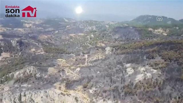Muğla'daki yangın havadan görüntülendi!