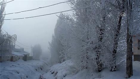 Doğu Anadolu'dan kış manzarası!