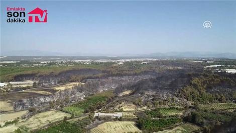 Orman yangınında zarar gören alan havadan görüntülendi