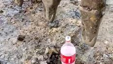 Kepçe operatörü pet şişenin kapağını devirmeden açtı